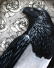 "All Ravens are Poe's Crows16"" x 20"" Ink & Acrylic & Ink on Cradled Panel (SOLD)"